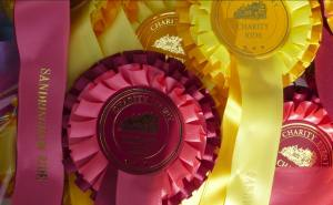 Charity Horse Ride - rosettes